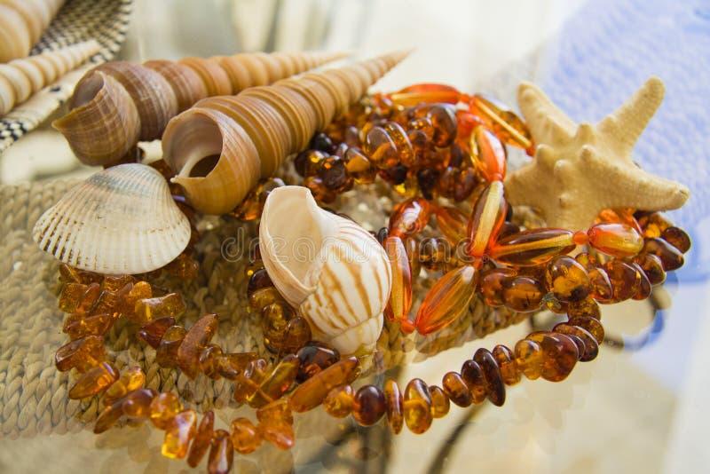 Vele Overzeese shells over stroachtergrond stock fotografie