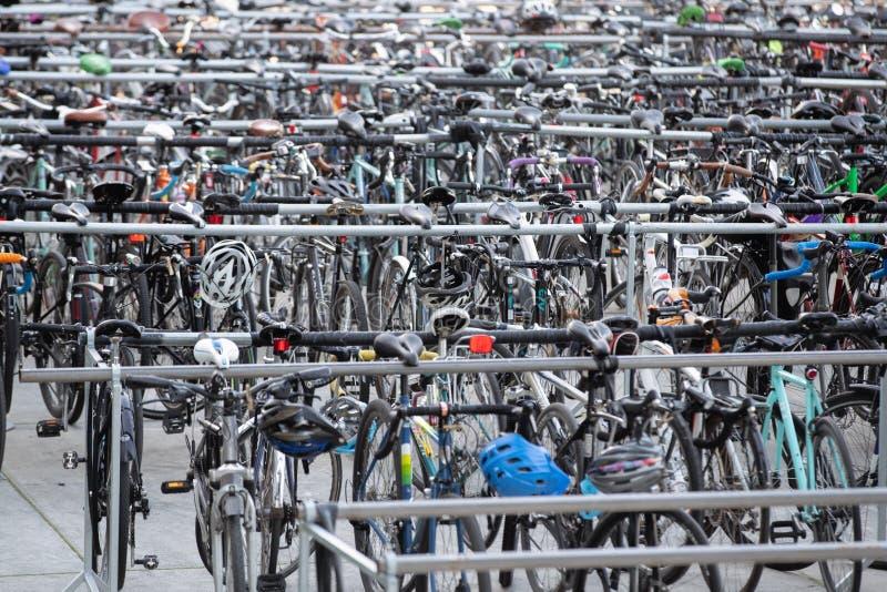Vele rijen van geparkeerde fietsen royalty-vrije stock afbeeldingen