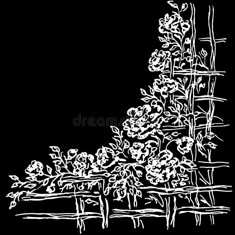 Vele rozen voorbij houten omheining Hand Getrokken Vectorillustraties van Abstracte die Reeks Bloemen op Witte Achtergrond wordt  stock illustratie