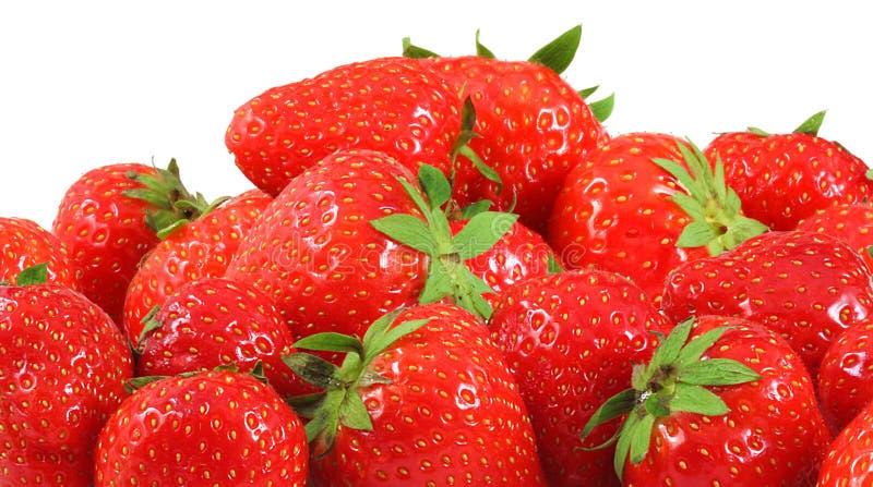 Vele strawberrys stock fotografie