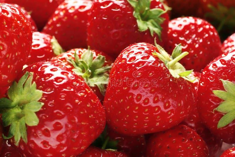 Vele verse rijpe aardbeien als achtergrond royalty-vrije stock foto