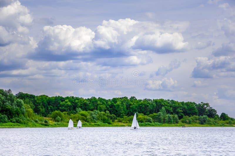 Veleiros brancos que navegam através do rio Sozh fotografia de stock