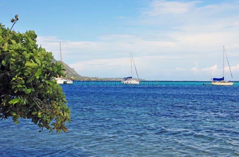 Veleiros fora de Moorea, Tahiti Polinésia francesa fotografia de stock