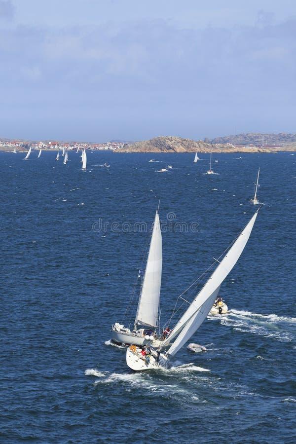 Veleiros no mar foto de stock royalty free