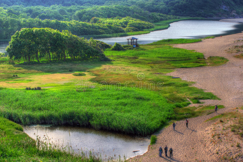 Veleka河,保加利亚三角洲  库存照片
