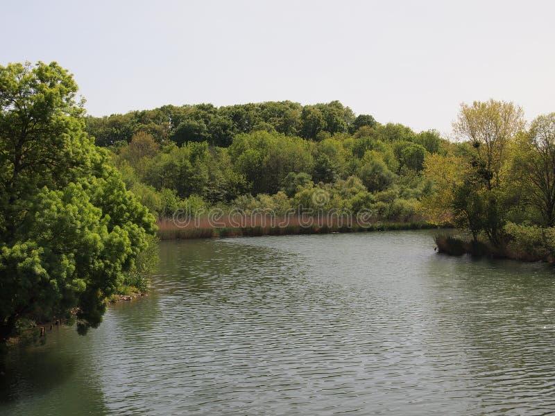 Veleka河(Sinemorets,保加利亚) 库存图片