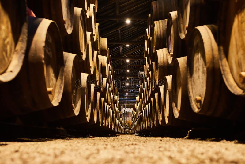 Velho envelheceu tambores de madeira tradicionais com vinho em um cofre-forte alinhado na adega fresca e escura em It?lia, Porto, imagens de stock royalty free