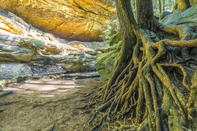 Velho equipa o monte ohio de Hocking da caverna imagens de stock