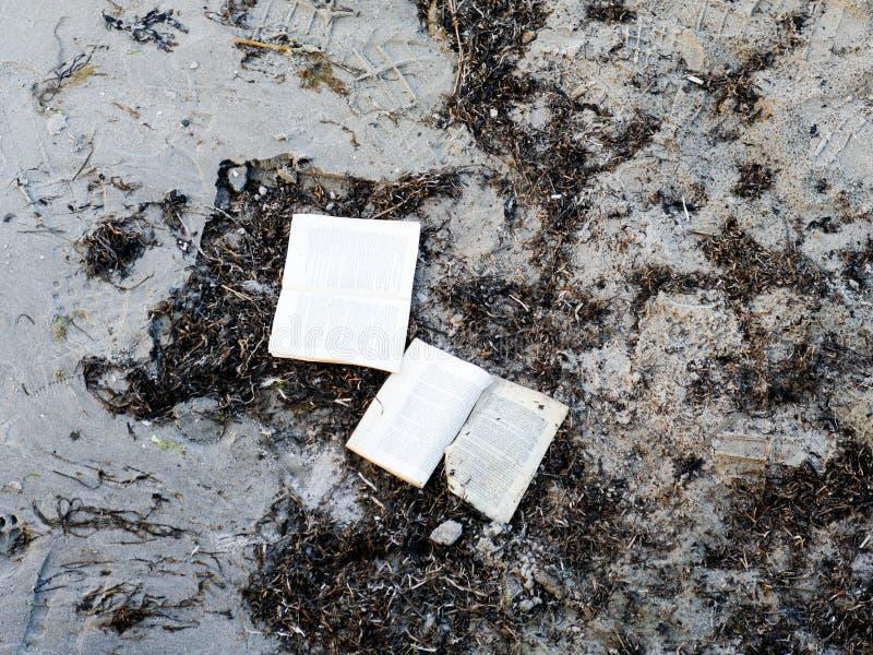 Velho lavado acima do livro na praia imagens de stock royalty free