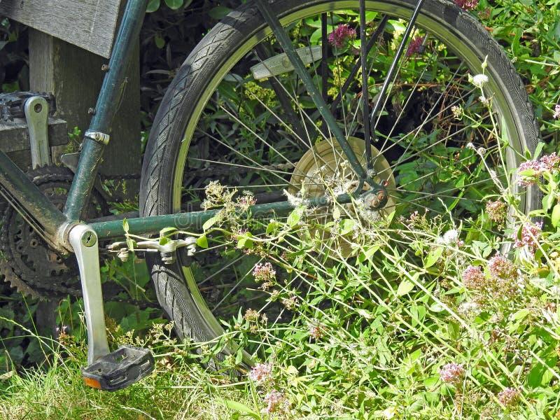 Velho vender de porta em porta a bicicleta rodam no prado coberto de vegetação do jardim selvagem imagem de stock