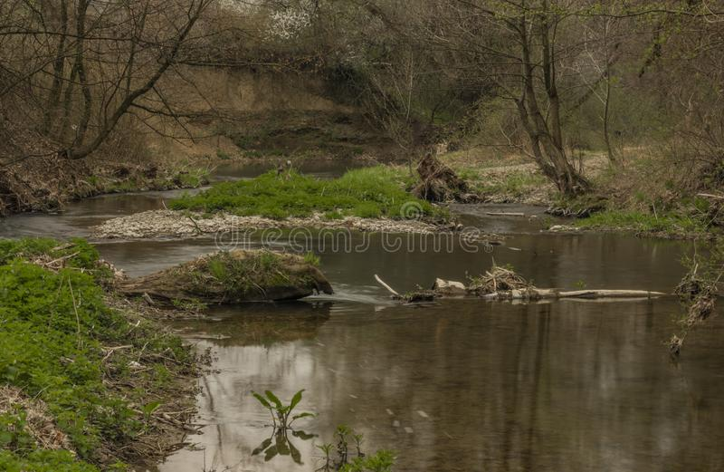 Velicka河在Louka村庄附近的春天阴天 库存照片