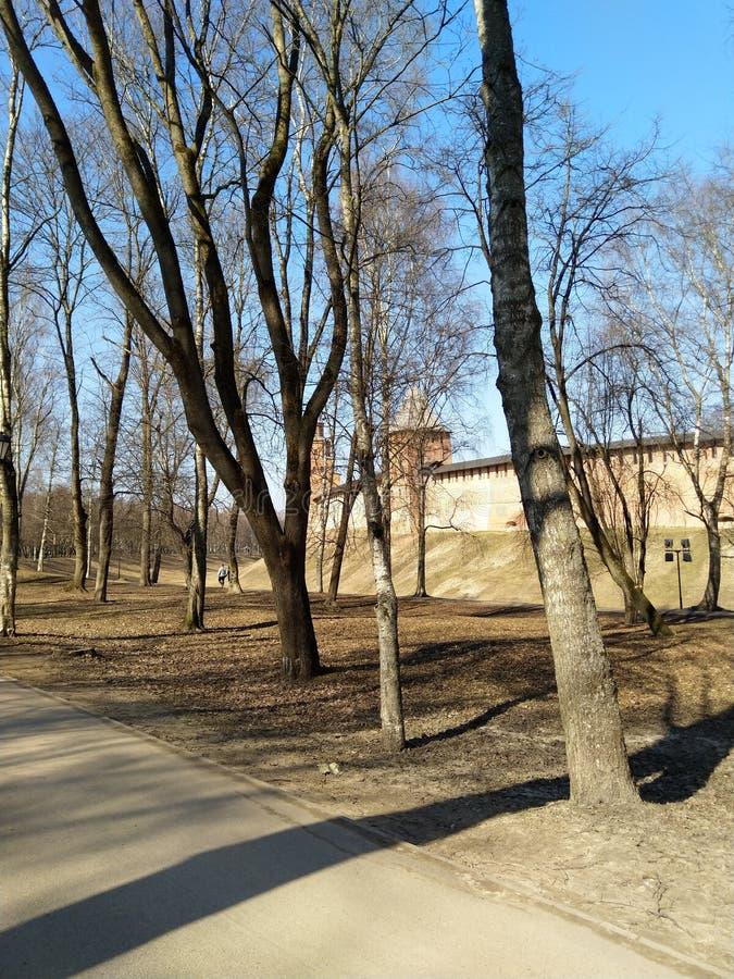Velikii诺夫哥罗德州克里姆林宫 免版税库存图片
