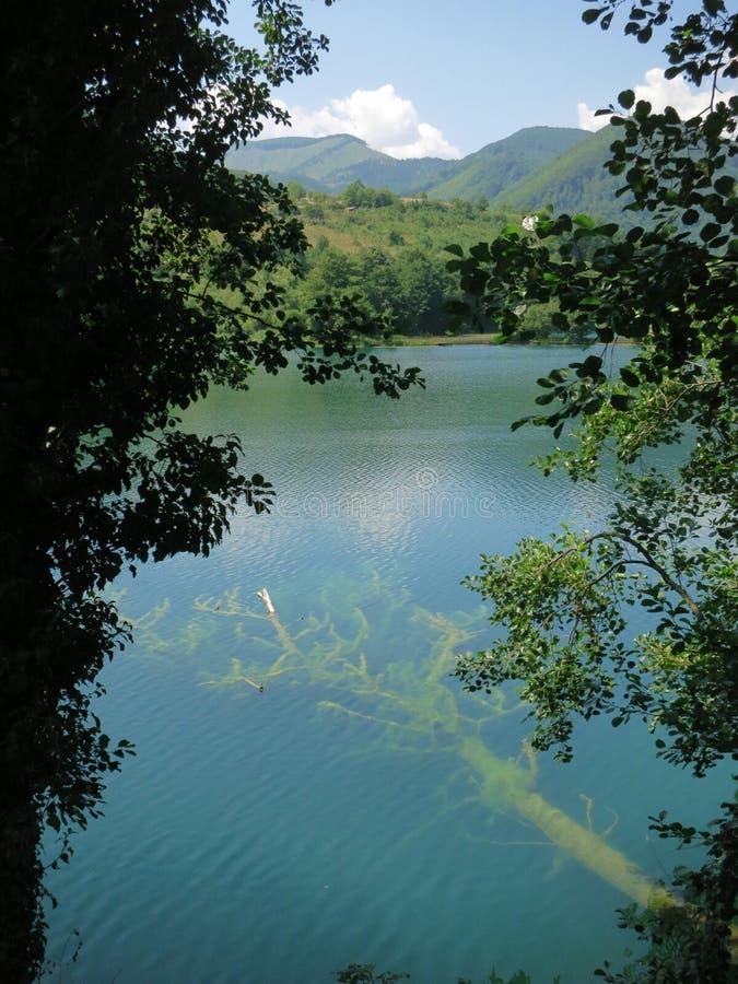 Veliko Plivsko Wielki jezioro w Bośnia z spadać drzewem w wodzie zdjęcia royalty free