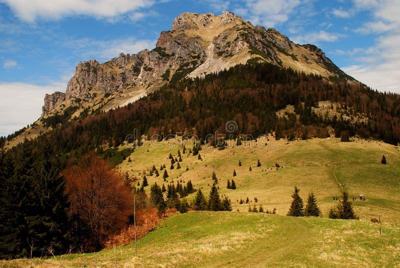 Velky Rozsutec, βουνά Mala Fatra, Σλοβακία στοκ εικόνα με δικαίωμα ελεύθερης χρήσης
