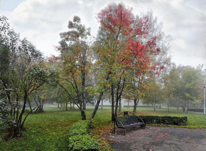 Velo argenteo di foschia sopra il parco di autunno fotografie stock libere da diritti