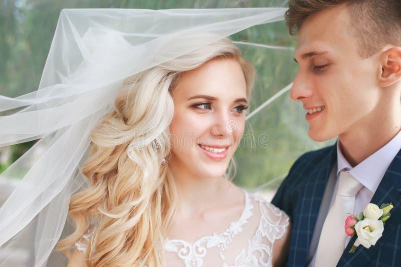 Velo cubierto que se besa de los pares de la boda Casarse pares románticos se está abrazando Novia de la belleza con el novio imágenes de archivo libres de regalías