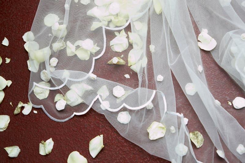 Velo de la novia fotos de archivo libres de regalías
