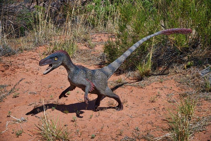 Velociraptor arkivfoton