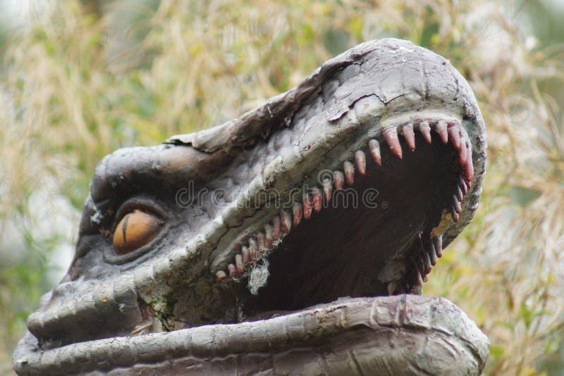 Velociraptor zdjęcia royalty free