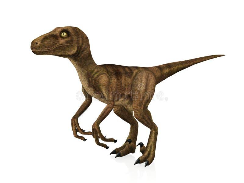 Velociraptor ilustración del vector