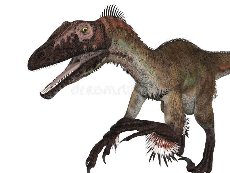 Velociraptor d'isolement illustration stock
