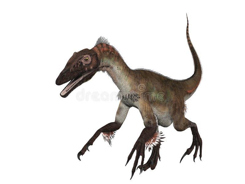 Velociraptor d'isolement illustration libre de droits