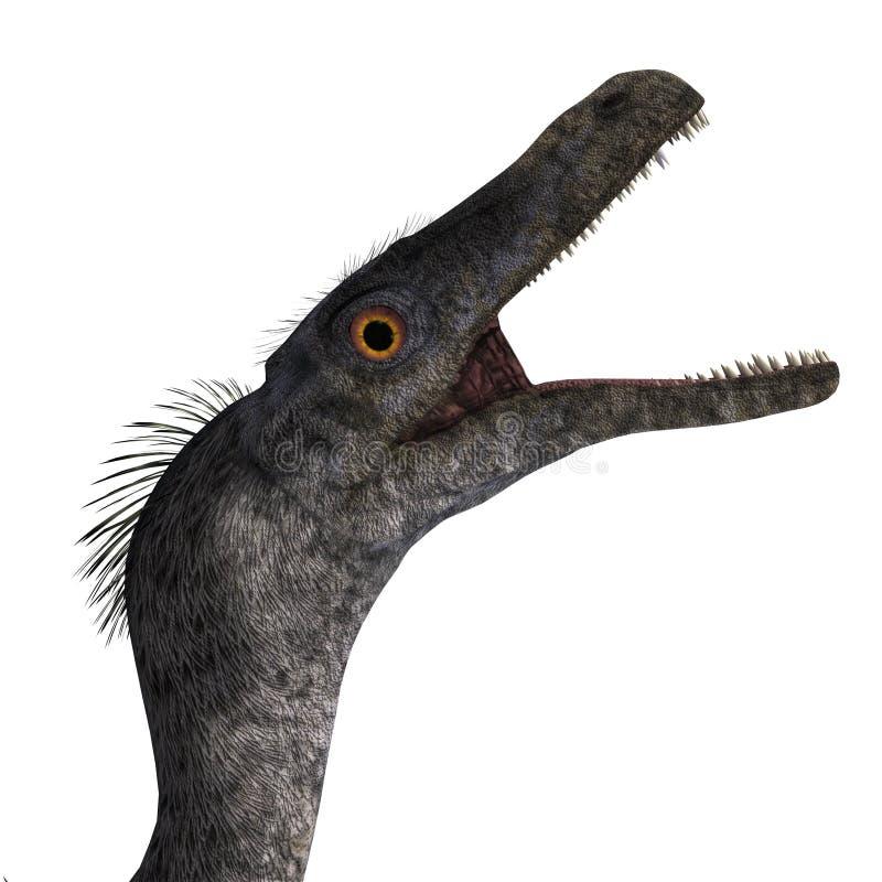 Velociraptor del dinosaurio ilustración del vector