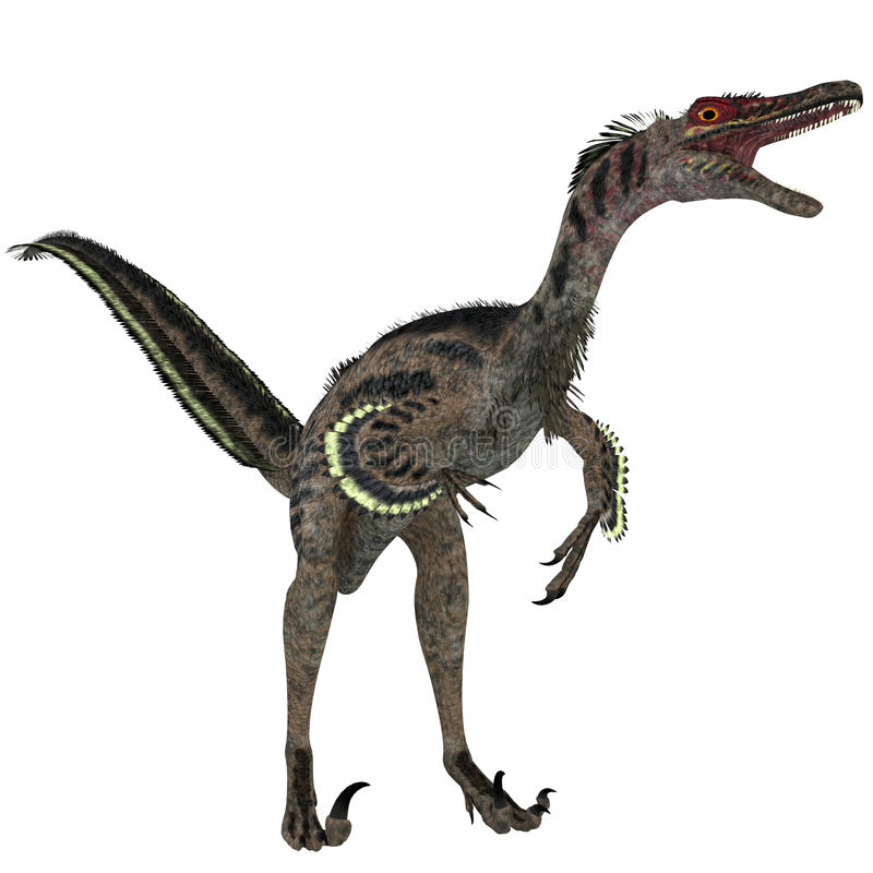 Velociraptor no branco ilustração stock