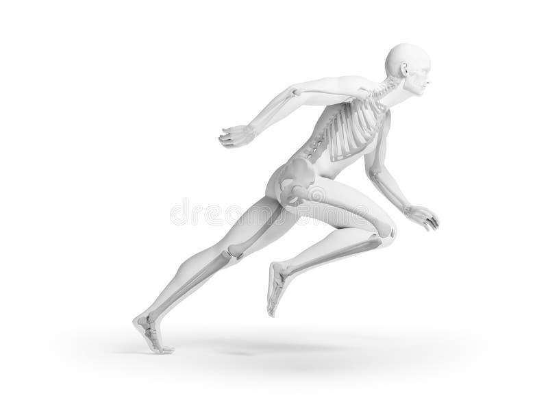 Velocista humano ilustração stock