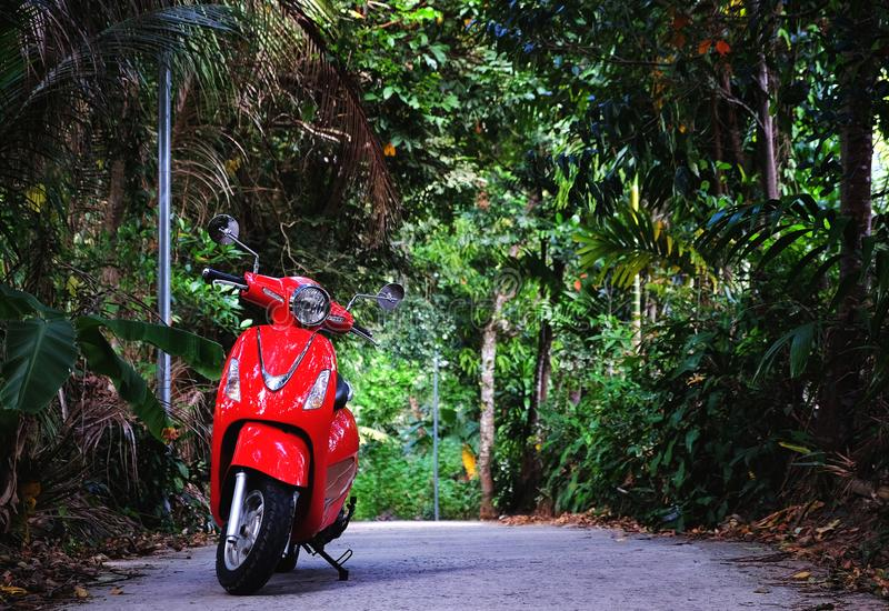Velomotor vermelho estacionado na rua obscuro verde foto de stock