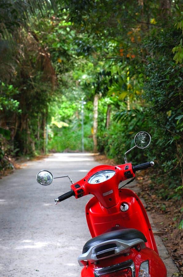 Velomotor vermelho estacionado na rua obscuro verde imagem de stock royalty free