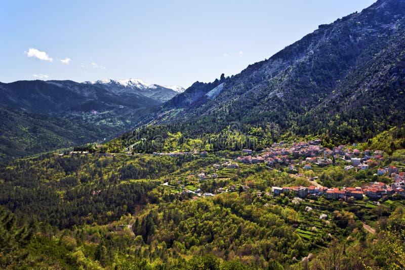 Venaco村庄在科西嘉岛 免版税库存照片