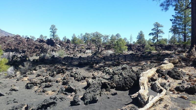 Venas antiguas de la lava fotografía de archivo libre de regalías