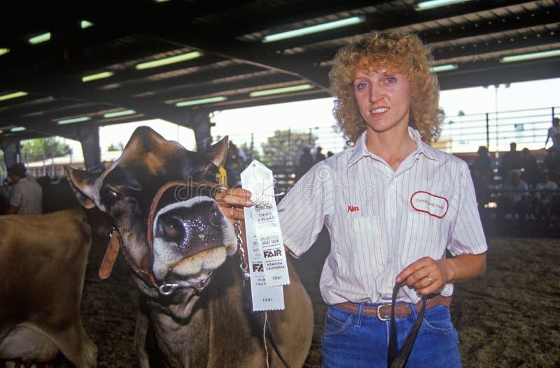 Vencedor da fita com a vaca do jérsei/Holstein, Los Angeles, feira de condado, Pomona, CA imagem de stock