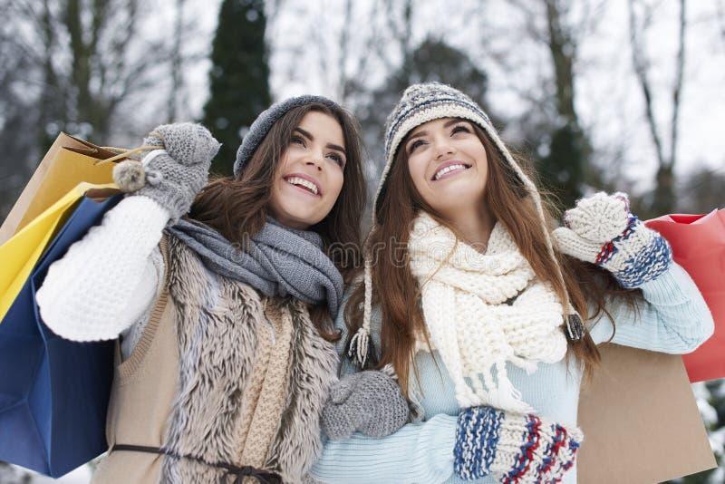 Venda do inverno foto de stock