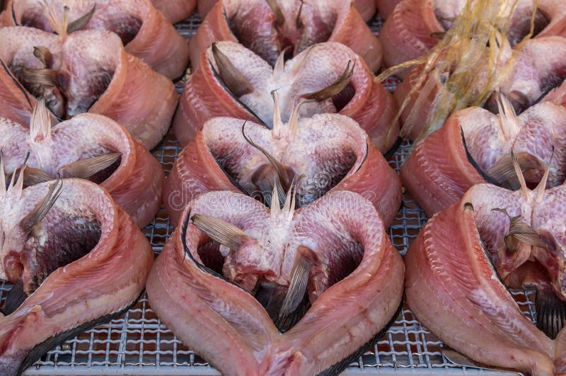 Venda secada do gurami de Snakeskin no mercado de Tailândia fotografia de stock royalty free