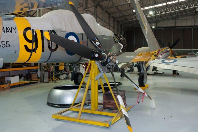 Vendedor ambulante real Sea Fury T da marinha 20 WG655 restaurados fotos de stock royalty free
