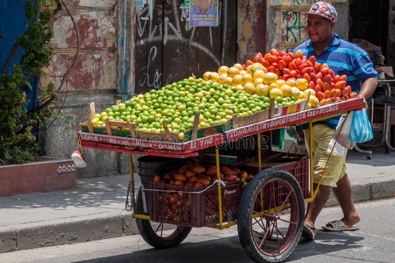 Vendedor con el carro de la fruta imágenes de archivo libres de regalías
