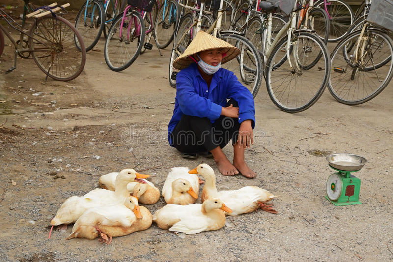 Vendedor interessante do pato em uma cidade pequena em Vietname fotografia de stock royalty free