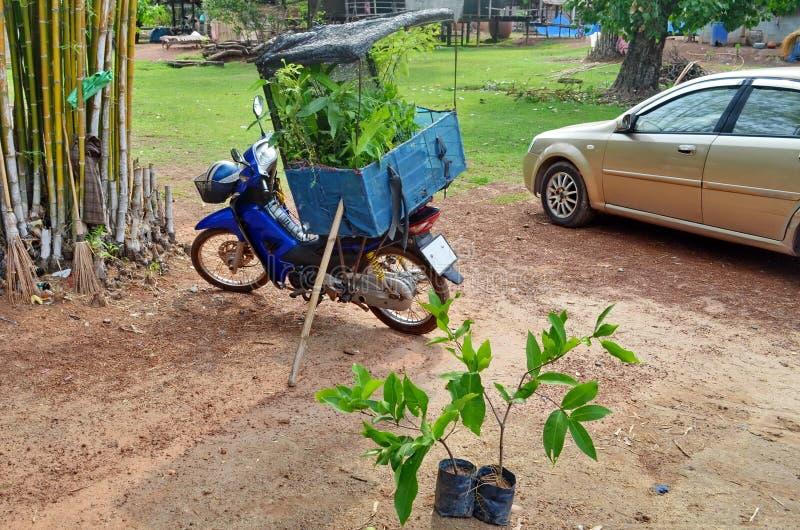 Vendedor móvil de la planta en la provincia de Sakon Nakhon de Tailandia del noreste rural imagen de archivo libre de regalías