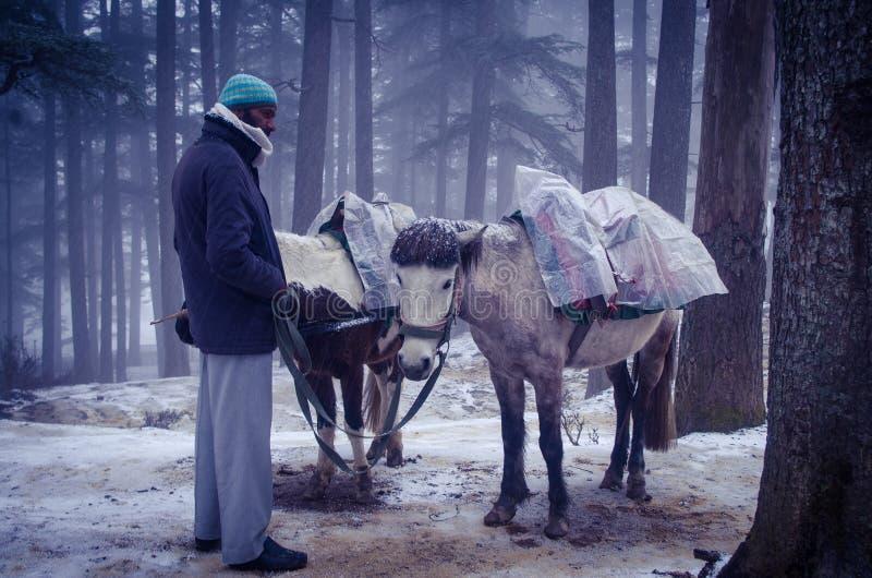 Vendedor @ Shimla del caballo fotografía de archivo