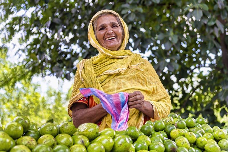 Vendedor sonriente de la papaya, Sri Lanka fotografía de archivo