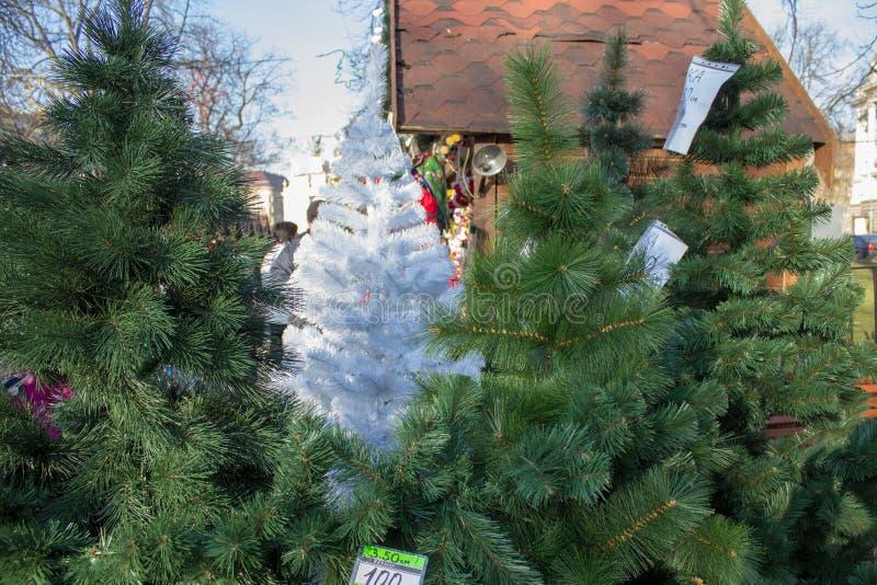 Vendendo gli alberi di Natale per il Natale, periodo del Natale che compera, vendita degli alberi di Natale sulla via fotografie stock libere da diritti