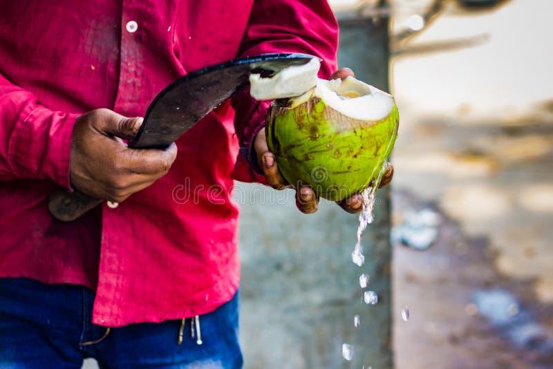 Vendeur coupant une coquille crue de noix de coco avec la faucille pour sortir le cocon image stock