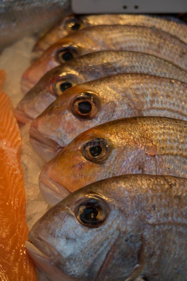 Vendeurs de poissons, marché de ville, Londres R-U image stock