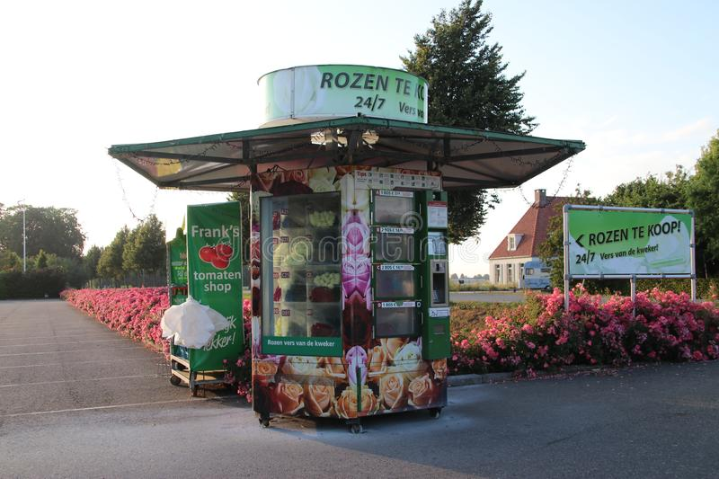 Vending machine with Roses at a greenhouse nursey where people can buy 24/7 roses in Moerkapelle in the Netherlands. royalty free stock photography