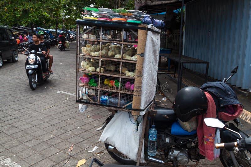 Vendita dei pulcini a Sukawati fotografie stock libere da diritti