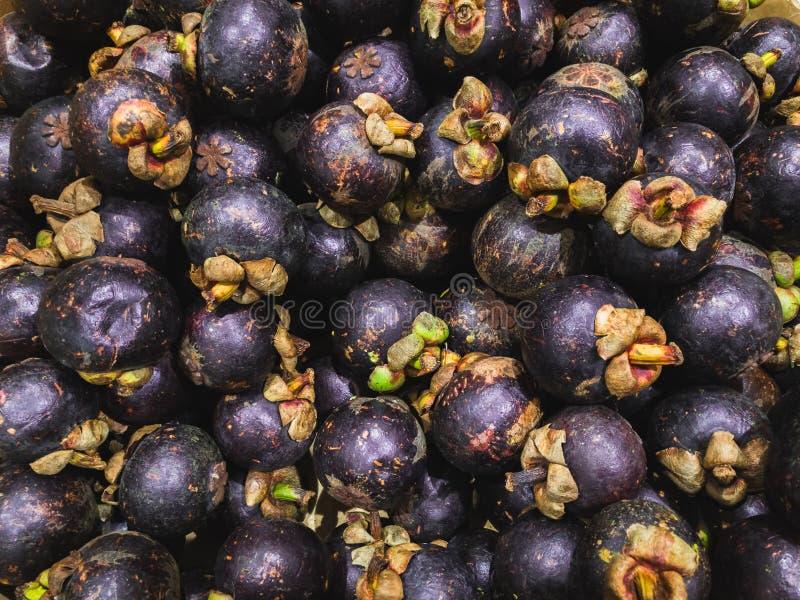Vendita del mangostano porpora Garcinia mangostana immagine stock