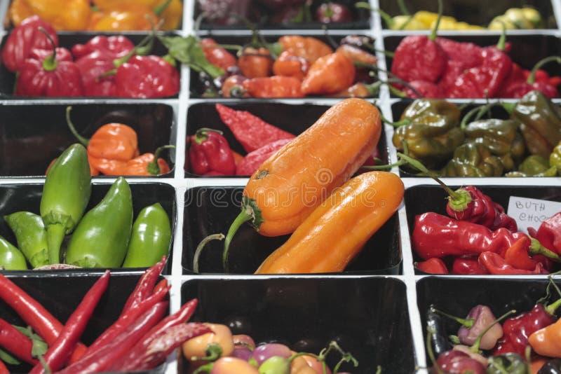 Vendita deliziosa multicolore del peperoncino in un mercato fotografia stock