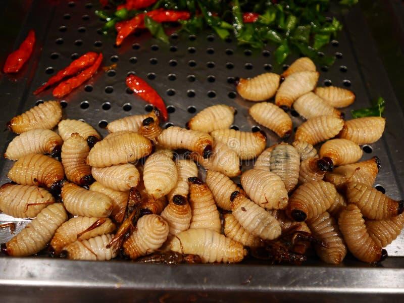 Vendita dello scarabeo del sagù del bambino come alimento immagine stock libera da diritti